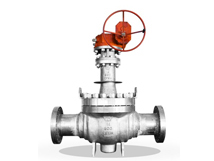 Cryogenic Ball Valves